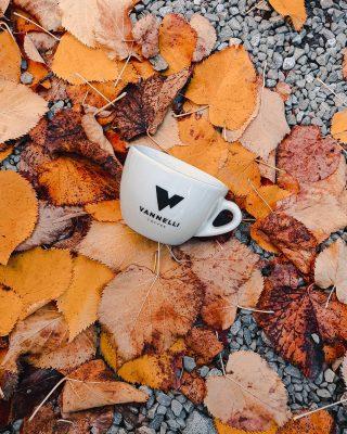 Vannelli Coffee autumn vibes 🍂 . . #vannelli #vannellicoffee #specialtycoffee #specialtycoffeeroaster #microroaster #barista #baristalife #coffeelover #coffeaddict #caffe #coffeeshop #coffeegram #coffeholic #outdoor #autumn #autumnvibes #autumnvibes🍁 #foliage #nature #fall #colours #leaves #foliagelove #beautifuldestinations #cortona #toscana #italia #italy #instagood #instalife @giacomovannelli_ @pietro_vannelli @babimatteini
